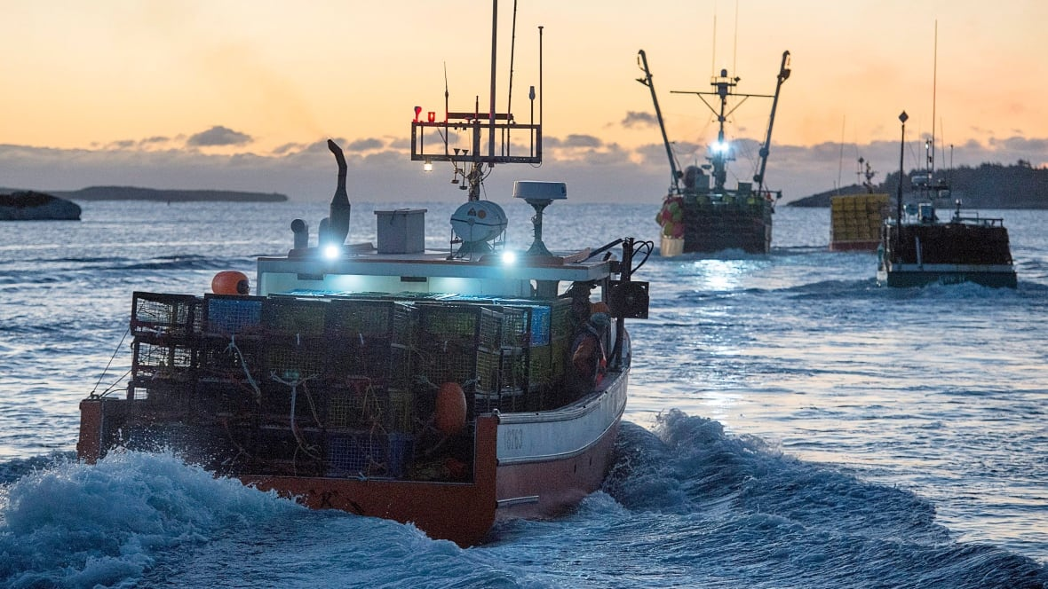 2 fishermen lose licences over 39 controlling agreements for Lobster fishing california