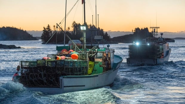 Yarmouth fishing group condemns fishermen accused of for Lobster fishing california
