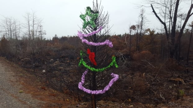 Why A Charred Christmas Tree Means So Much To A Family Who