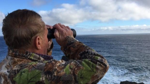 Stan Tobin looking for seabirds off Cape Race