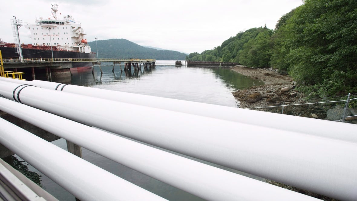 'Conditions attached': B.C. grants environmental green light for Trans Mountain pipeline expansion