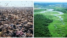 Fresh Kills - before and after
