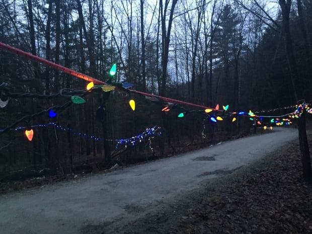 Champlain College pathway