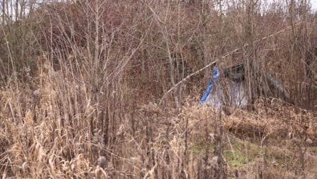 19-year-old woman dies is Surrey B.C. tent area used by homeless