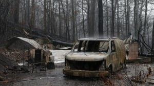 Canadian couple among 13 killed in Tennessee wildfires