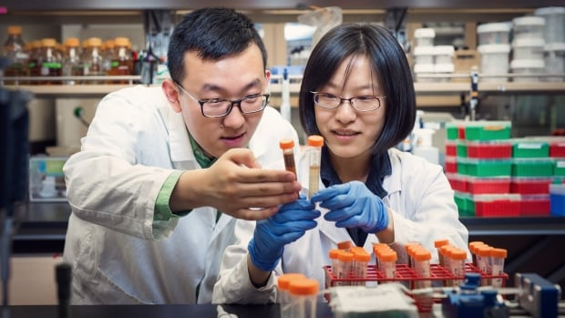 UBC food scientists Xiaonan Lu, left, and PhD candidate Yaxi Hu have developed a new method to identify the antioxidant levels in chocolate more quickly and easily.