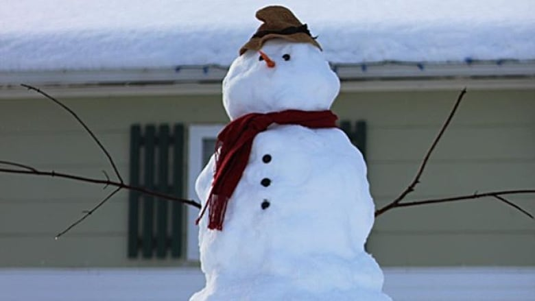 Nothing Like Bit Of Snow To Really Put >> On Tuesday S Crosstalk Let It Snow Let It Snow Cbc News
