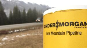 Along Trans Mountain pipeline, opinions range from pro to protest