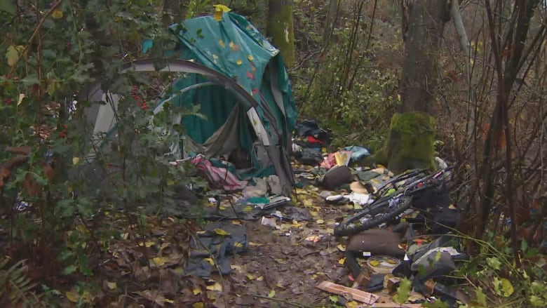 19-year-old found dead in Surrey B.C. tent u0027popped upu0027 in Alex Gervais investigation & 19-year-old found dead in Surrey B.C. tent u0027popped upu0027 in Alex ...