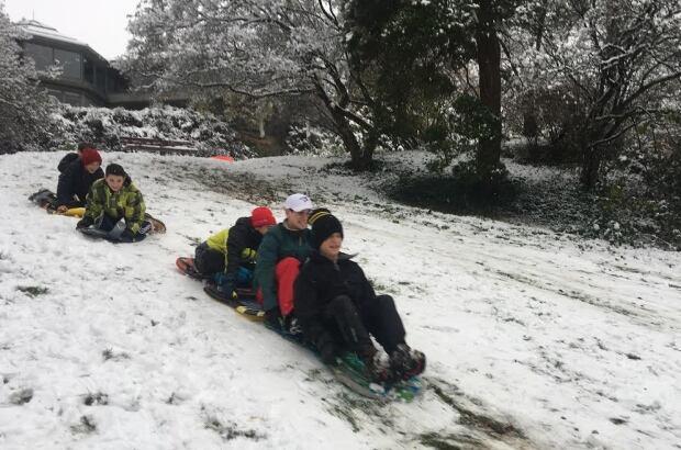 sledding at QE park