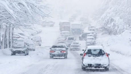 How to survive the snowpocalypse: Advice for Vancouver from the rest of Canada