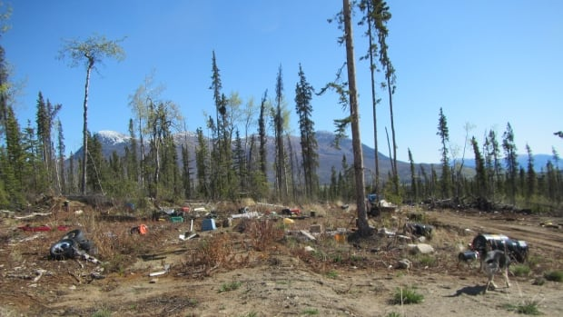 Romeo Leduc was convicted for refusing to clean oil-soaked soils and leaving debris on his woodlot near Haines Junction. Remediation assessors have estimated it will cost at least $42,000 to clean the area.