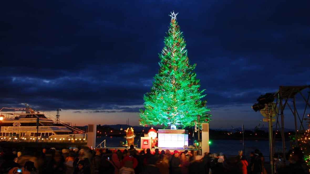 This city halfway around the world has a giant Christmas tree from ...