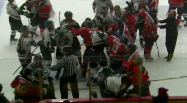 sledge hockey fight