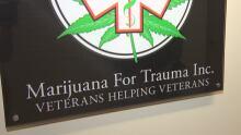 Marijuana for Trauma