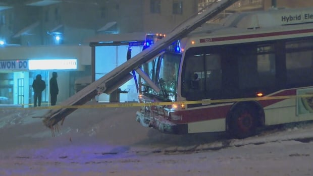 'Significant snowfall' warning issued for Toronto, Southern Ontario
