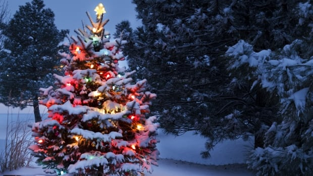 Christmas Weather Planner: What's In Store For Hamilton