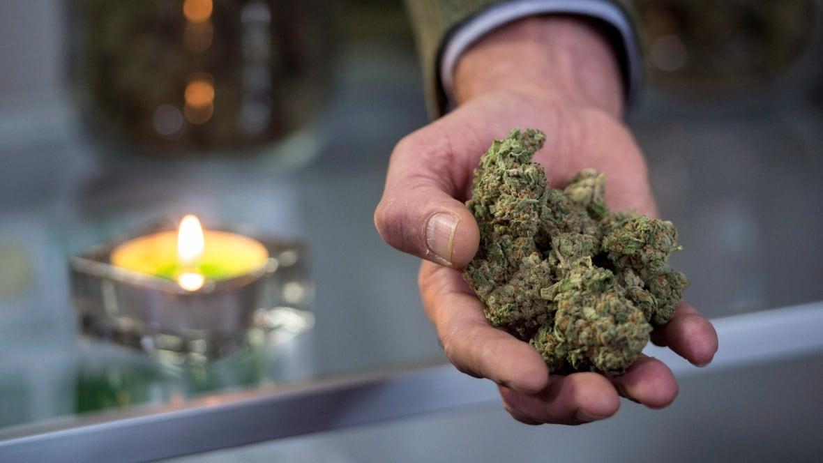 'Paradoxical response' to marijuana causing ER visits in Antigonish