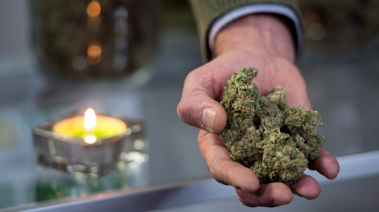 Smoking pot as a medicine raises questions for doctors about side