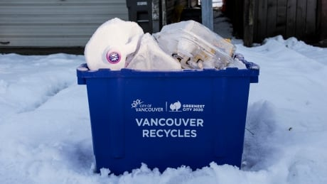 Vancouver Recycles Winter Frozen