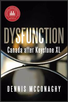 Dysfunction book by Dennis McConaghy