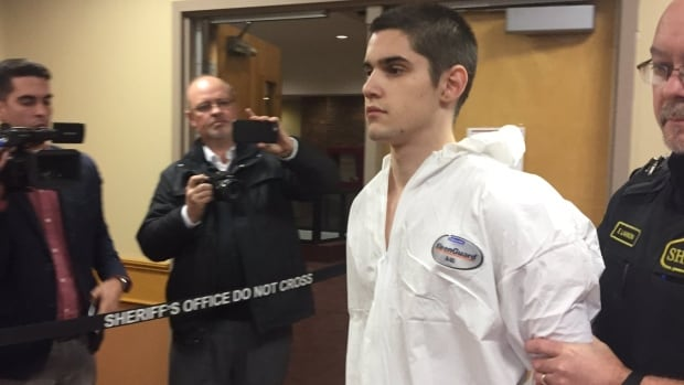 Graham Veitch, 18, was charged Monday with first-degree murder in the death of David Collins, assaulting his mother and brother, assaulting a police officer, stealing a vehicle and evading police.