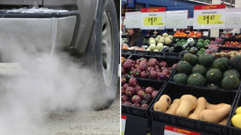 how the cbc alberta carbon tax calculator assesses groceries and