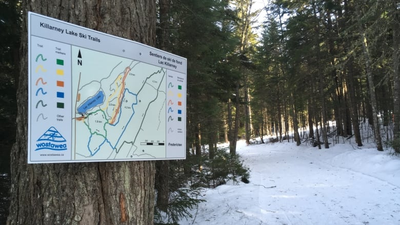 The Money Will Go To Improving Existing Five Kilometres Of Trail Along With Adding Another Nine Philip Drost CBC