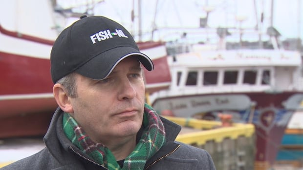 Former FISH-NL president forms new group to represent inshore fish har... image