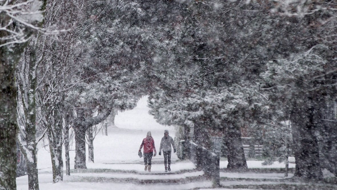 Dreaming of a white Christmas? Snow expected to blanket most of Canada