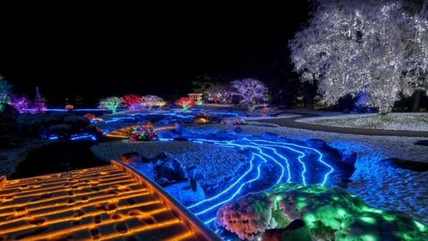 The elaborate Japanese garden light display is on until Feb. 2 at Nikka Yuko in Lethbridge, Alta.