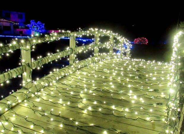 Japanese winter light festival Lethbridge
