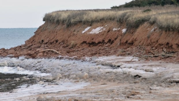 High water swept soil from this embankment west of Brackley Beach. Wind and water are the most common causes of soil erosion.