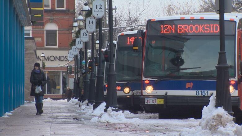 Fredericton public transit survey gets unexpected response CBC News