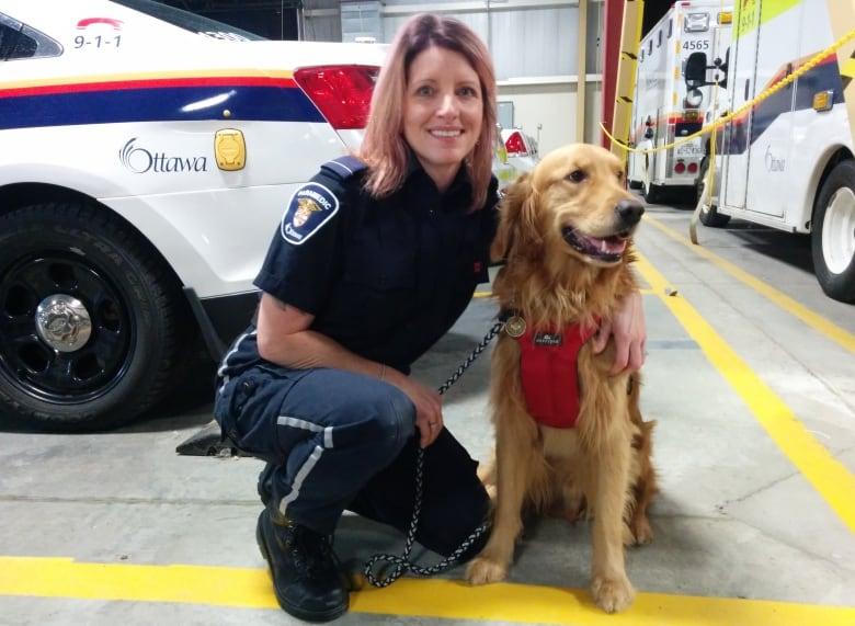 Training Your Own Service Dog Canada