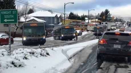 Buses in Snow