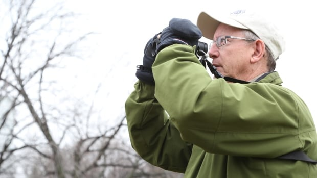 Todd Pepper, an avid bird watcher, travelled the world to track down a member of all 234 bird species.