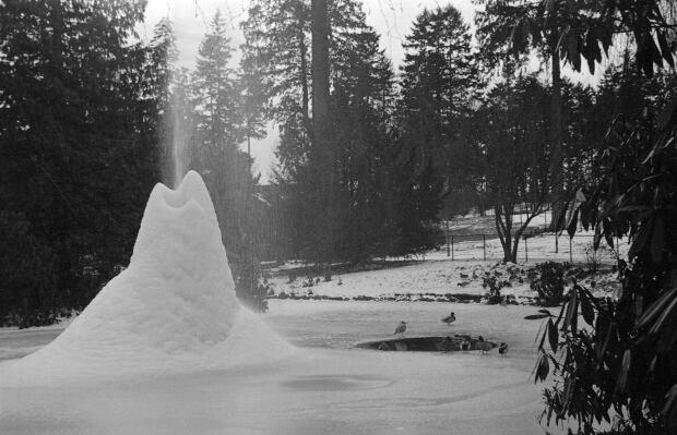 Duck pond fountain
