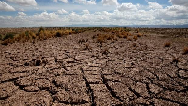 A dried farmland is seen during the worst drought in 25 years in El Choro, Bolivia, on December 1, 2016.