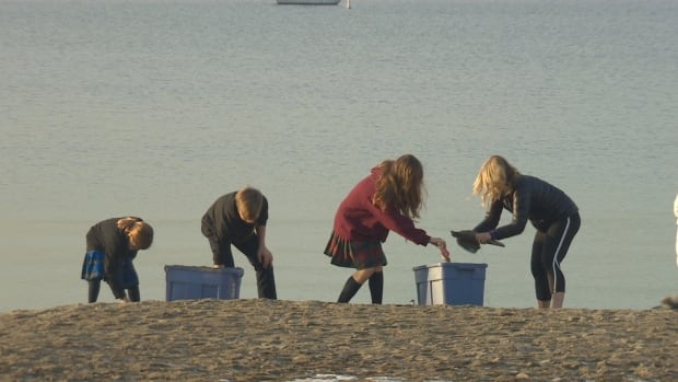 A woman and three children were spotted scooping up sand at Kitsilano Beach on Thursday, presumably to use as ice melt.