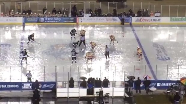 AHL: Downpour Turns Minor League Outdoor Classic Into Puddle Party (Saturday)