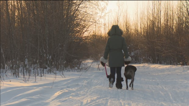 The trails in the 553 neighbourhood are a popular spot for walking dogs. Last week a dog was caught in a baited snare just off the trail, and ENR says setting traps in the area is perfectly legal.