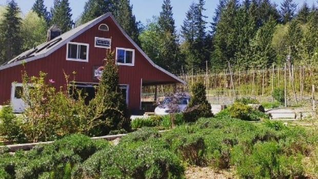 """Persephone Brewing's Gibsons operation in the spring. The craft brewery's application for a """"non-farm use distinction"""" was rejected by the Agricultural Land Commission and now they have two years to meet ALR rules — or leave."""