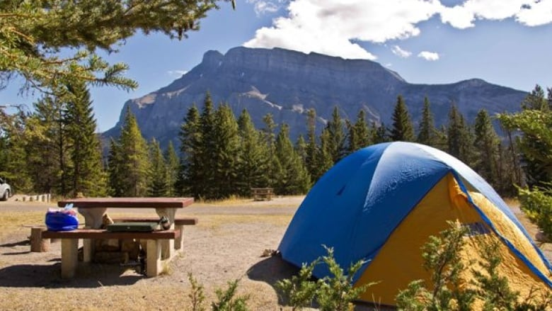 Users slam Parks Canada for online campsite reservation glitches