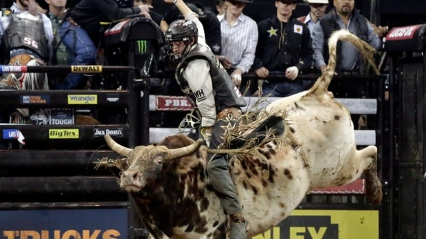 Merritt, B.C., bull rider Ty Pozzobon died at age 25.