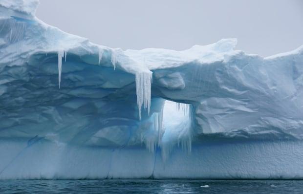 iceberg paradise bay antarctica