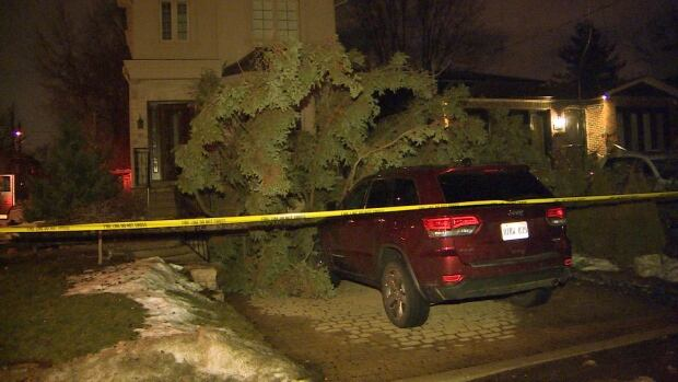 Heavy winds caused a tree to fall onto a car on Glengarry Avenue.