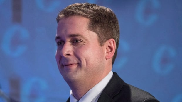 Conservative leadership candidate Andrew Scheer has received the most endorsements so far in the campaign.