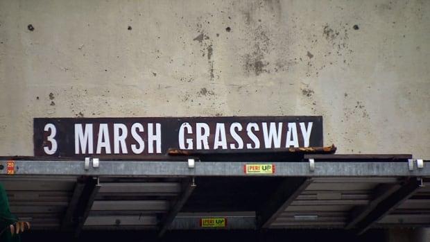 Toronto 3 Marsh Grass Way