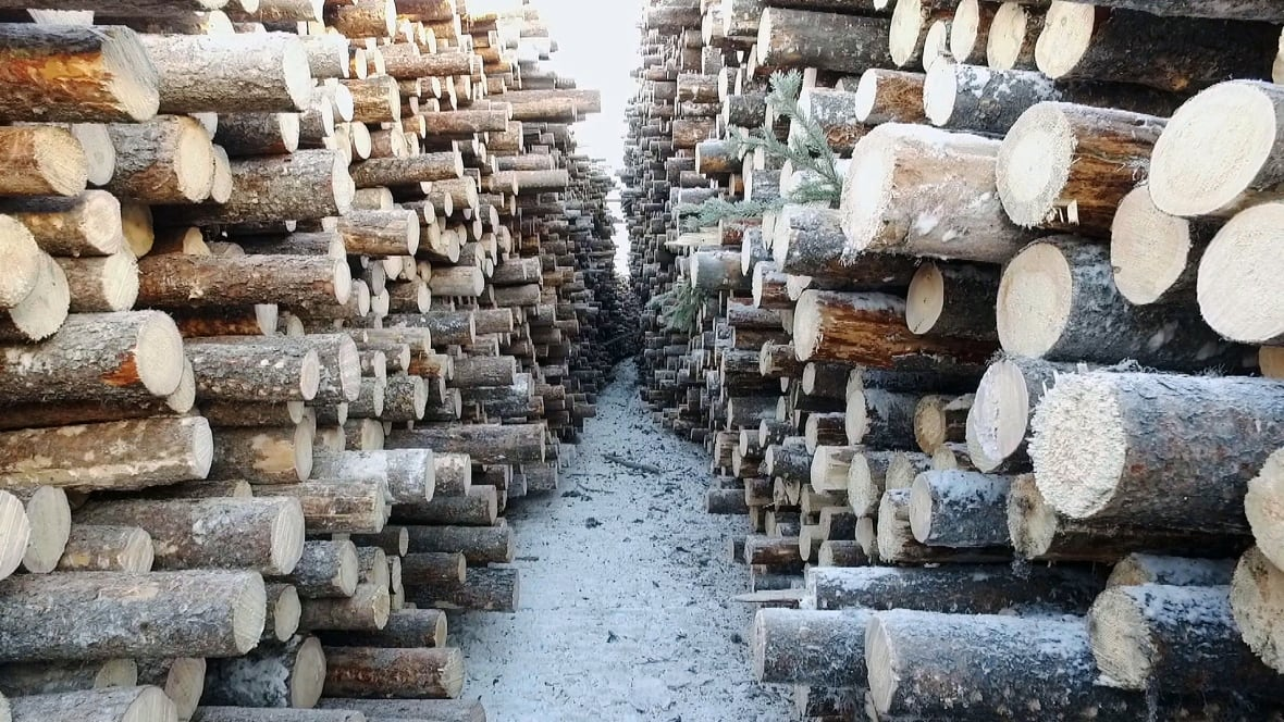 Bracing for looming lumber war b c town cautiously